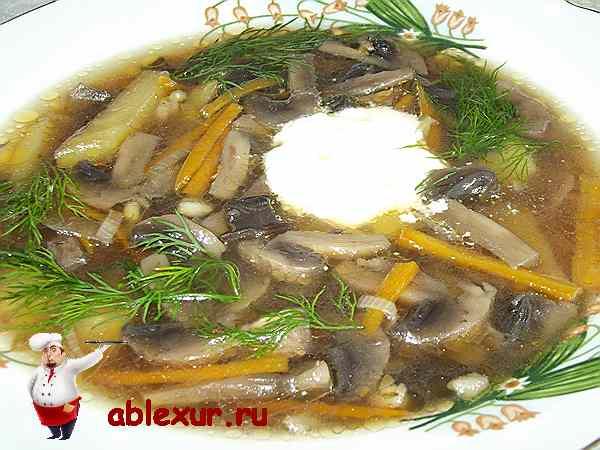 грибной суп с перловкой со сметаной
