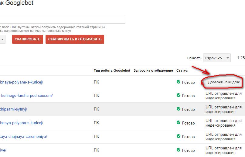 кнопка добавления статьи в индекс