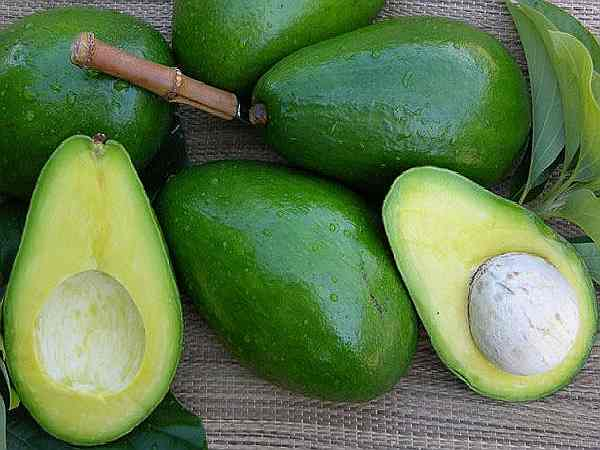 авокадо полезные свойства и предостережения