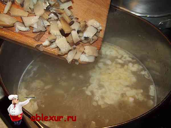 соединяю мелко нарезанные грибы с бульоном
