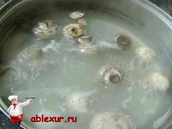 грибы для начинки варятся в кастрюле