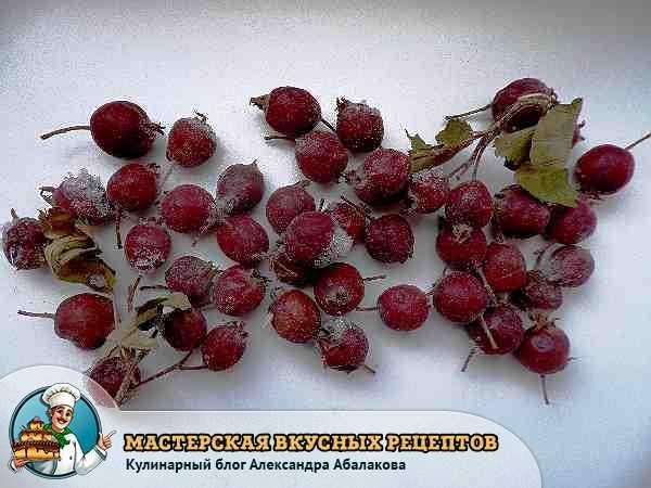 Замороженные ягоды шиповника