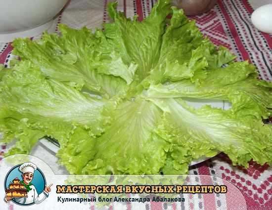 листья зеленого салата на блюде
