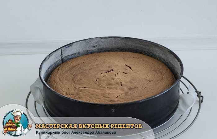 запеченный в духовке корж из бисквитного торта роше